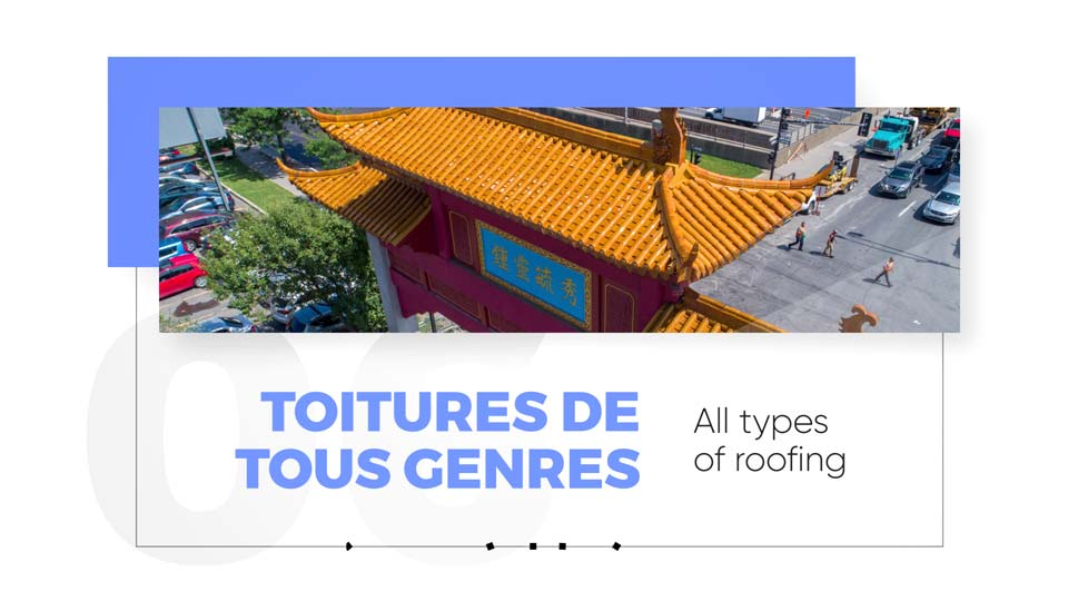 Roofs and infrastructures inspection by drone